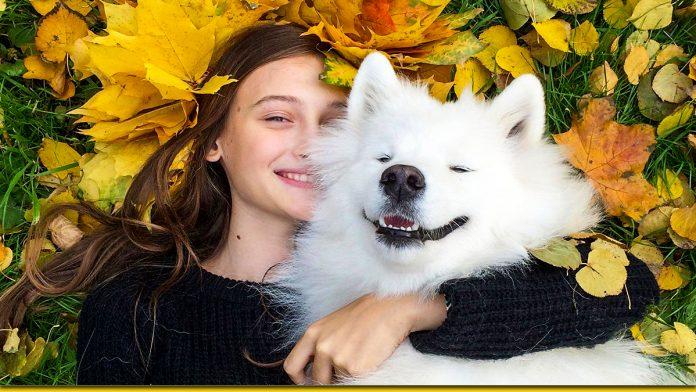 Є така порода собаки - смішаки. 30 фото справжнього позитиву