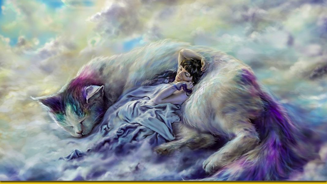 У снах завжди приходять підказки - тлумачення снів за днями тижня