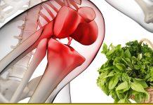 Суміш з 4 трав - потужний засіб для регенерації хрящів