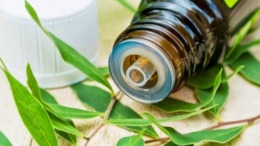 Цілюща олія, яка лікує псоріаз, грибок, простуду і багато іншого