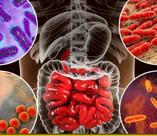 Продукти, які відновлюють мікрофлору шлунка без ліків
