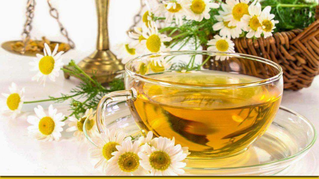 Ромашковий чай — натуральні ліки проти сотні болячок