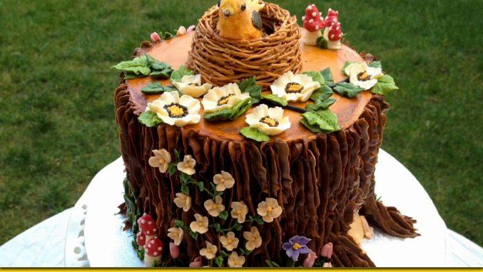 Торт Трухлявий пень - смакота, яка збирає разом всю сім'ю